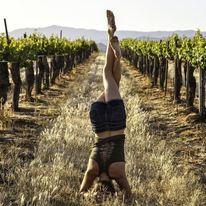 winery headstand 2